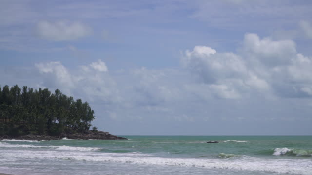 4k of Sea beach and tropical forest with blue sky.