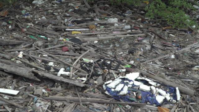 4k schwenken Schuss von Müll an Mangroven Wald und Meer Küste.