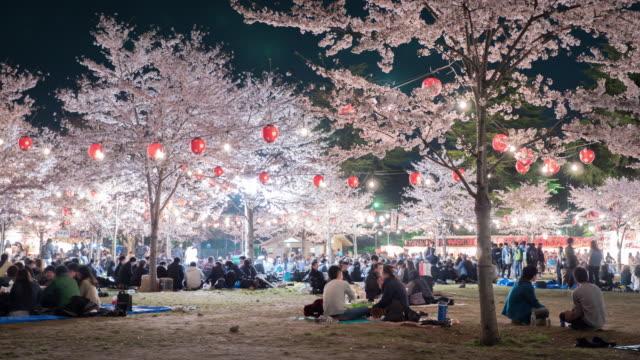 vídeos y material grabado en eventos de stock de 4 k: personas para disfrutar de la iluminación cerezo flores - picnic