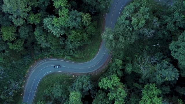 4 k auflösung luftbild road trip durch einen wald - biegung stock-videos und b-roll-filmmaterial