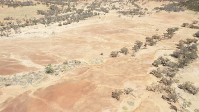 4k resolution of moving drone video over dry, drought pastures showing the  patterns of dry water channels outback australia - 絶滅点の映像素材/bロール