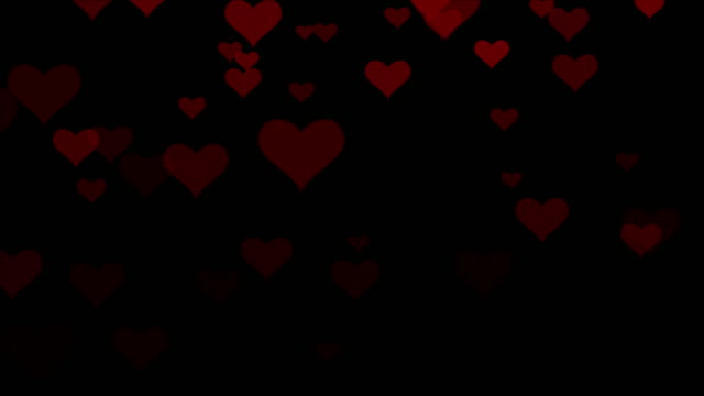 4k resolution Particle Abstract Background of Heart fall alpha layer on Back, valentine background