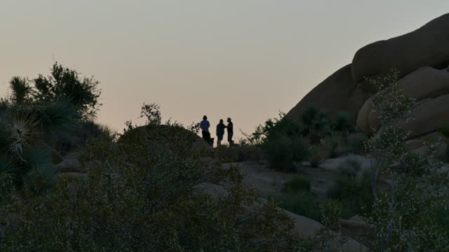 4k soft focus a family standing on a ridge watching the sunset - western usa stock videos & royalty-free footage