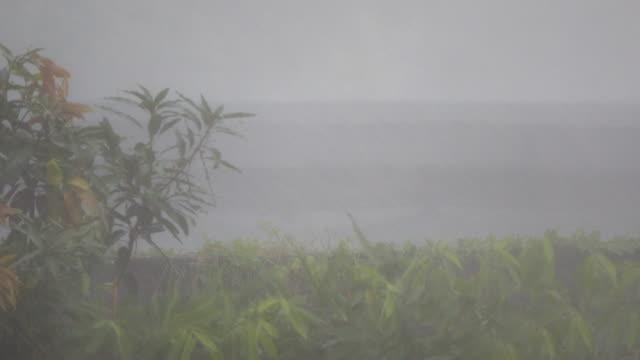 4k: storm rainy - typhoon stock videos & royalty-free footage