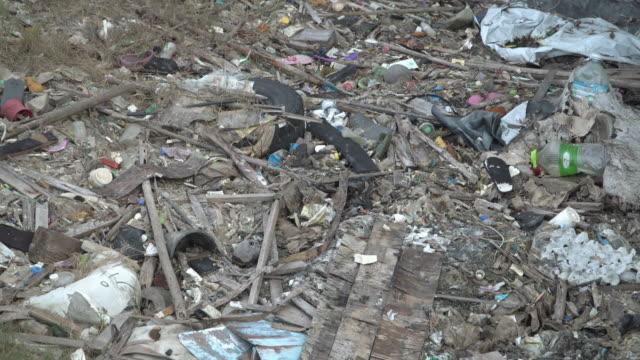 vídeos y material grabado en eventos de stock de 4k subirlo tiro de basura en costa de mar y bosque de manglar. - antihigiénico