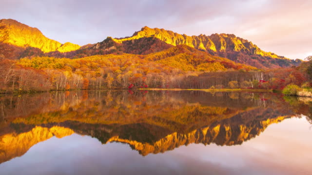 4k time lapse of kagamiike pond in autumn season, nagano, japan. - autumn leaf color stock videos and b-roll footage