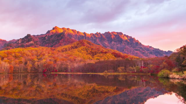 4k time lapse with dolly left of kagamiike pond in autumn season, nagano, japan. - high dynamic range imaging stock videos and b-roll footage