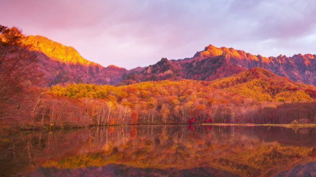 4k time lapse with dolly right of kagamiike pond in autumn season, nagano, japan. - autumn leaf color stock videos & royalty-free footage