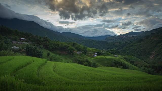 vidéos et rushes de 4k time-lapse de rizière étape et nuageux dans sapa vietnam. - rizière