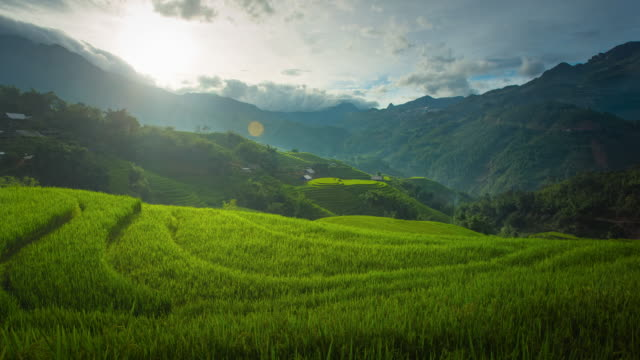 4k time-lapse of step rice paddy at sunset in sapa vietnam. - sa pa stock videos and b-roll footage
