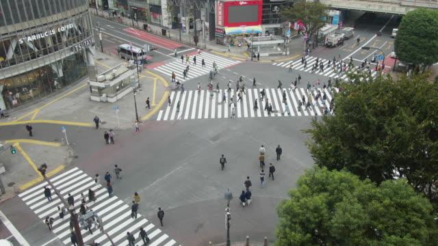 4 k 東京都渋谷交差点のドリー ショットで時間経過。 - dolly shot点の映像素材/bロール