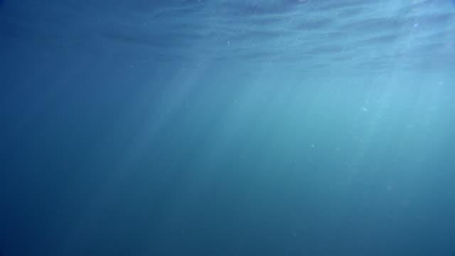 4k underwater intense shimmering light rays - underwater stock videos & royalty-free footage