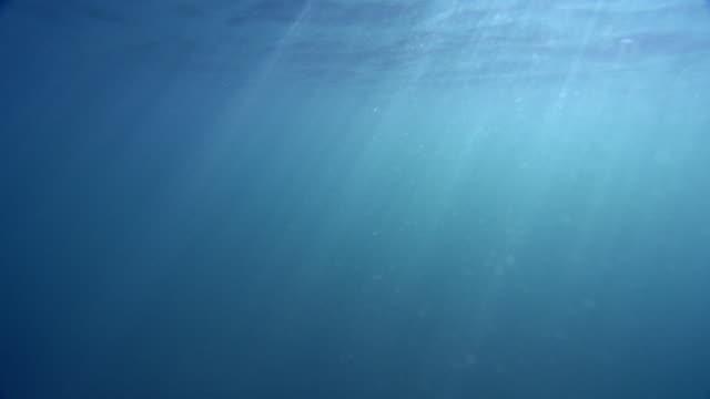 4k unterwasser intensiv schimmernde lichtstrahlen - undersea stock-videos und b-roll-filmmaterial