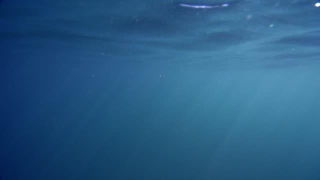 vidéos et rushes de 4k lightrays et bulles sous-marines - augmentation de la luminosité - surface aquatique