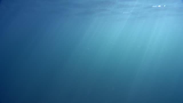 vidéos et rushes de 4k lightrays et bulles sous-marines - surface aquatique