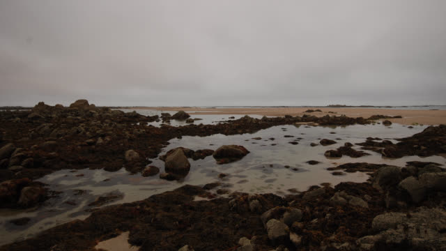 4k version of time-lapse of tide coming in - tide stock videos & royalty-free footage