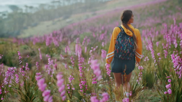 4k video footage of a woman hiking through a field of perennials - jacket stock videos & royalty-free footage