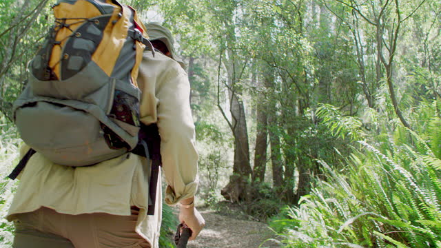 4k video footage of an unrecognizable man hiking through the forest alone during the day - hiking pole stock videos & royalty-free footage