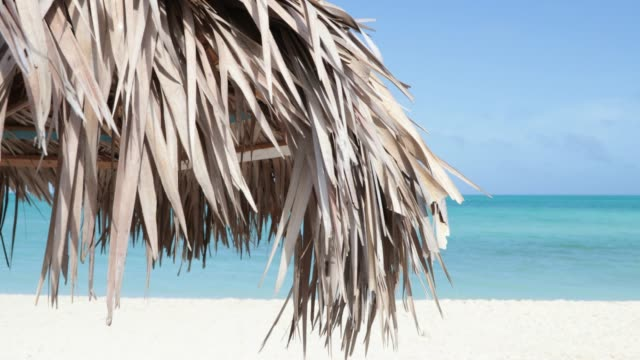 天気の良い日に青緑色の水との 4 k ビデオの牧歌的な熱帯ビーチ - キューバ点の映像素材/bロール