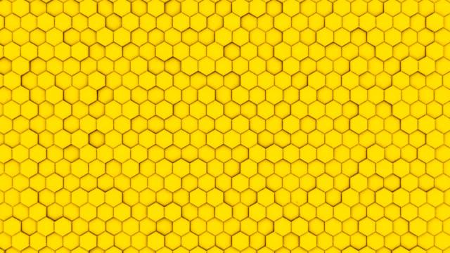 4k yellow honeycomb - hexagon stock videos & royalty-free footage
