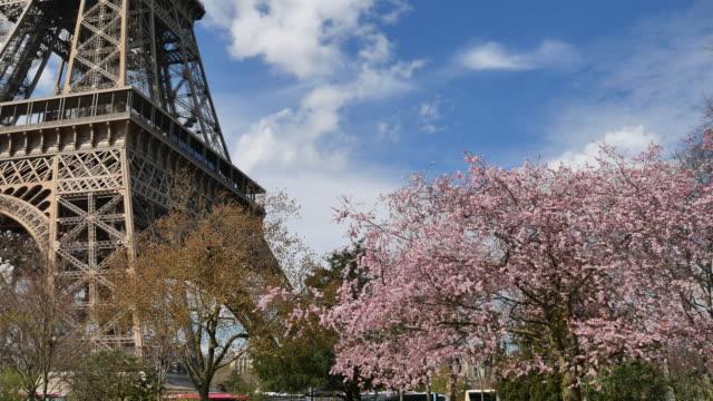 4 k: 美しい桜の木とエッフェル塔、4k(uhd) - エッフェル塔点の映像素材/bロール