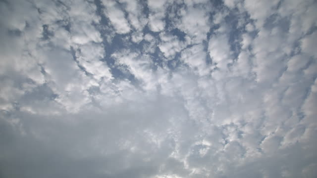 4k,t/l,cirrocumulus clouds. - cirrocumulus stock videos & royalty-free footage