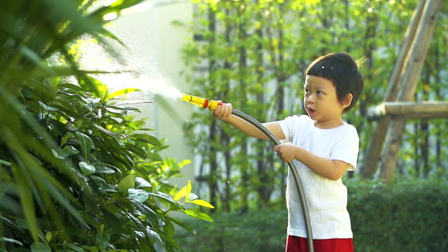 4k:cute little boy watering on the tree. - watering can stock videos and b-roll footage