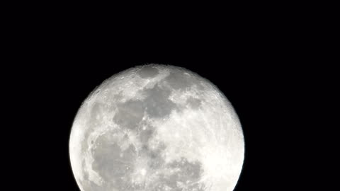 4k:super full moon - moving up stock videos & royalty-free footage