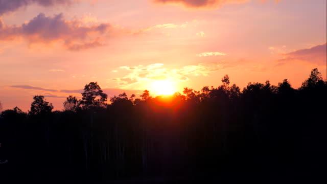 stockvideo's en b-roll-footage met 4ktimelapse van de ondergaande zon achter bos - oregon amerikaanse staat