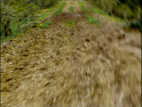 4x4 races along bumpy track in barren rainforest landscape ecuador - bumpy stock videos & royalty-free footage