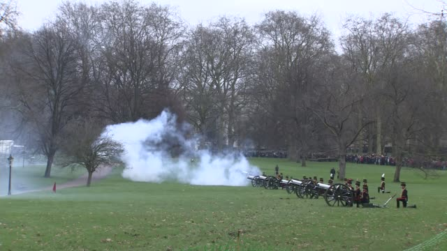 64th anniversary of the accession of the queen to the throne england london ext various shots king's troop royal horse artillery firing gun salute... - royal horse artillery stock videos and b-roll footage