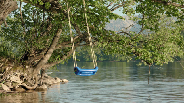 a blue plastic swing mounted to a old tree above the water surface at the lakeside of lake staffelsee swinging left behind by the kids during nice and late sunlight on a perfect summer day - altalena video stock e b–roll