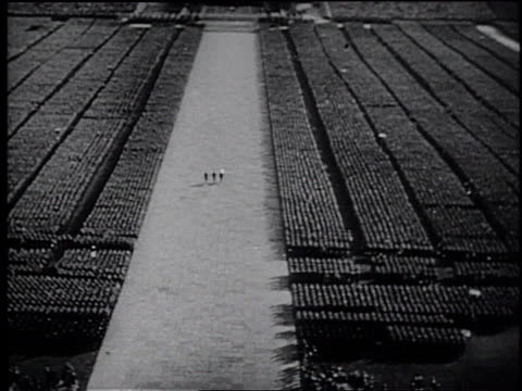 MONTAGE a documentary by Frank Capra of the Nuremberg Nazi Party rally / Germany
