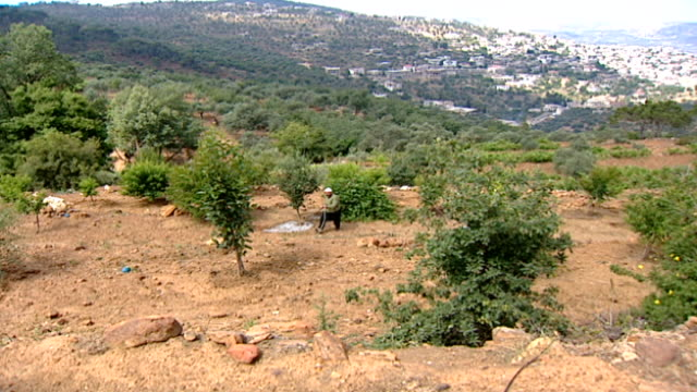 of a druze farmer tending to an orchard in a hasbaya field, with ain qenya in the distance. his skull cap indicates that he is a juhhal, aka an... - irrigation equipment stock videos & royalty-free footage