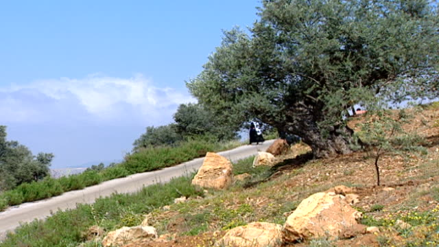 ws of a druze woman examining a tree on a steep rural road the clothing of the woman indicates that she is an uqqal who has access to druze religious... - steep stock videos & royalty-free footage