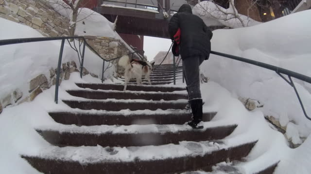 POV of a family walking with their snowboards at a ski resort.