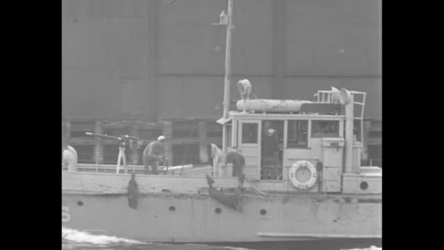 vs a fireboat passes a warehouse facility followed by a speedy boat passing while blaring a siren ships in the bay with a rumrunner boat passing with... - passing a note stock videos & royalty-free footage