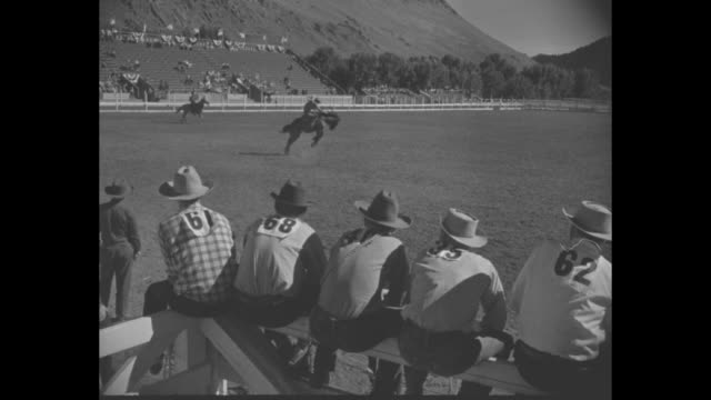 a group of cattle in the desert / pan right a cowboy rides to the right side of a group of running cattle / parade of rodeo participants on horseback... - bucking bronco stock videos & royalty-free footage
