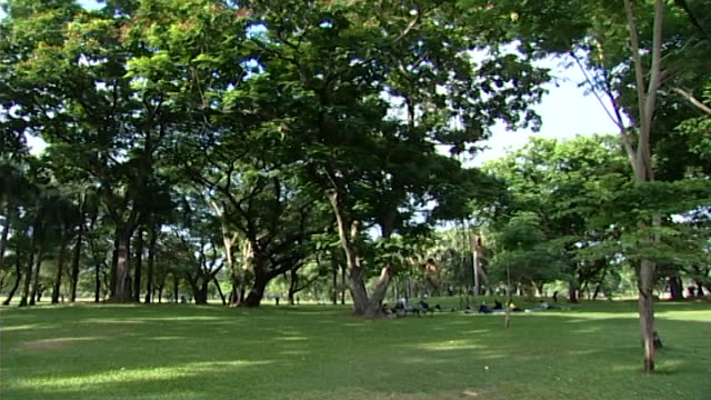 of a group of people practicing yoga on mats in a park in bangkok. - mat stock videos & royalty-free footage