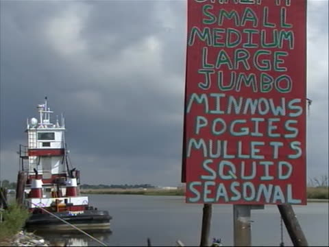 """a large red hand-painted sign reading """"shrimp small medium large jumbo minnowspogiesmullets squid seasonal"""" seen in the foreground as fishing boat... - louisiana stock videos & royalty-free footage"""