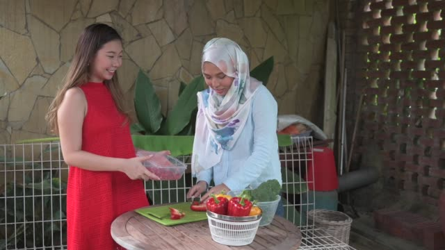a malay and chinese female friends preparing food in the kitchen during weekend social gathering - malaysian ethnicity stock videos & royalty-free footage