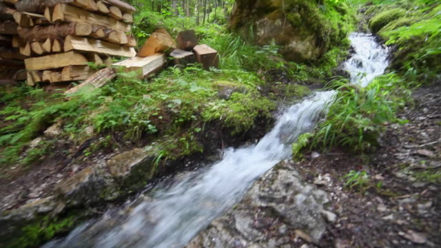 pov of a man hiking on a trail in a forest near a stream. - goodsportvideo stock videos and b-roll footage