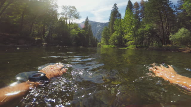 pov of a man swimming in merced river of yosemite - river merced stock videos & royalty-free footage
