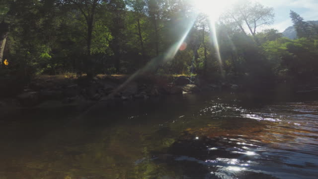 pov of a man swimming in merced river of yosemite - merced river stock videos & royalty-free footage