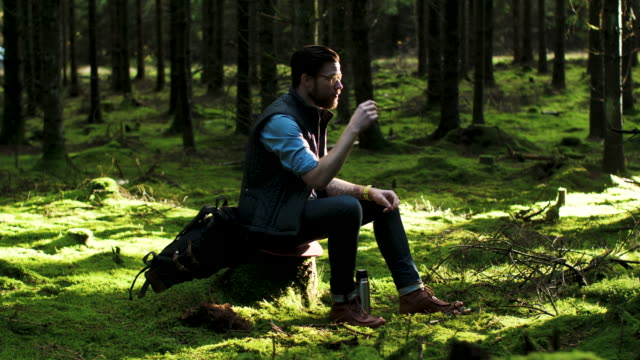a man taking a break in the forest - recreational pursuit stock videos & royalty-free footage