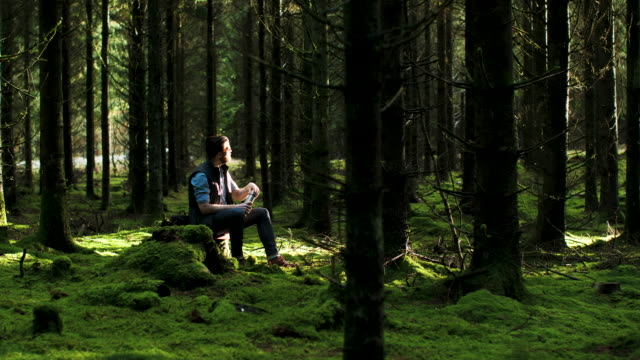 en man tar en paus i skogen - ryggsäck bildbanksvideor och videomaterial från bakom kulisserna