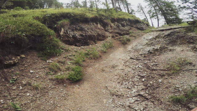 pov of a man trail running offroad in a mountain forest: timelapse - off road racing stock videos and b-roll footage