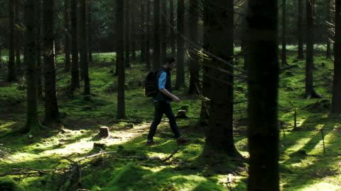 vídeos y material grabado en eventos de stock de un hombre caminando en el bosque - plano de plataforma rodante