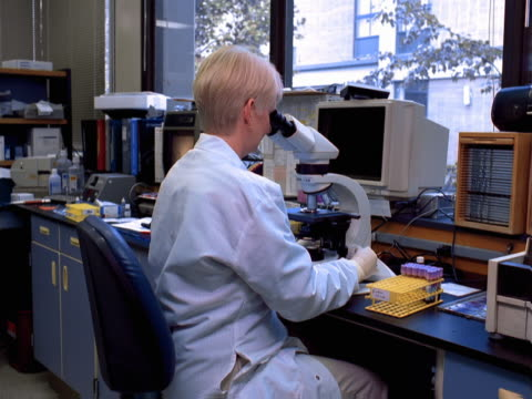 a medical lab tech examines specimens under a microscope - one mature woman only stock videos & royalty-free footage