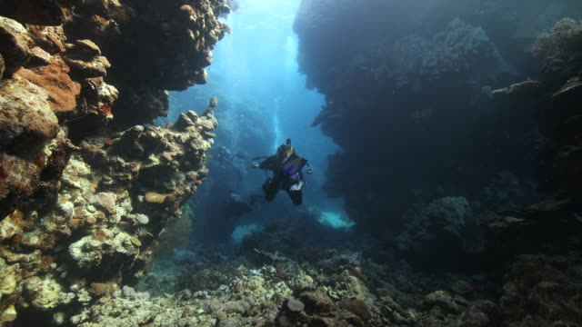 a scuba diver explores a coral reef cavern - scuba diving stock videos & royalty-free footage